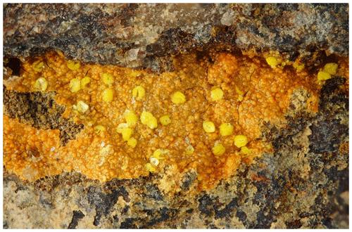 https://www.eur-j-mineral.net/32/89/2020/ejm-32-89-2020-f01